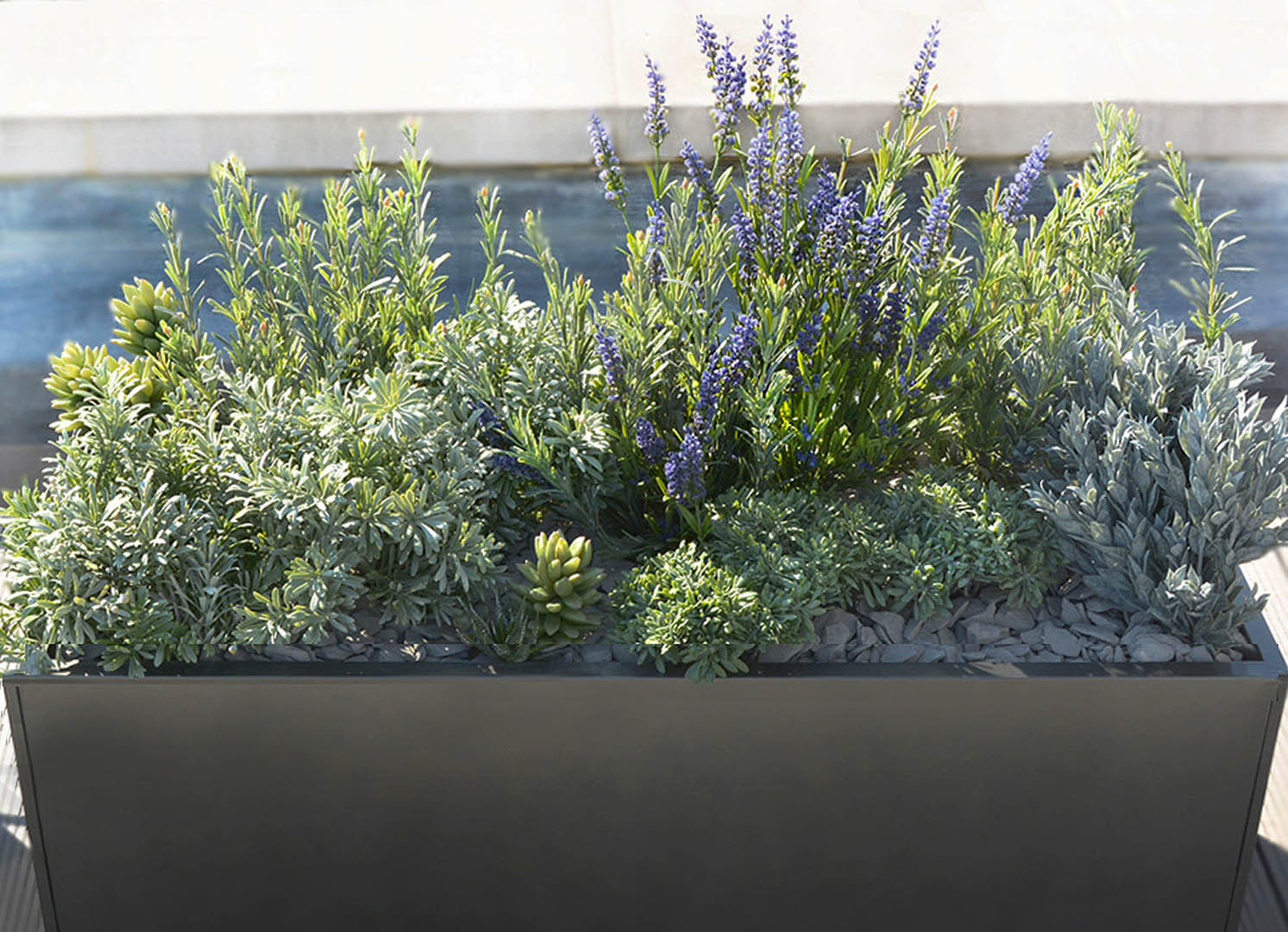487 fake landscapes mixed modern deep window box