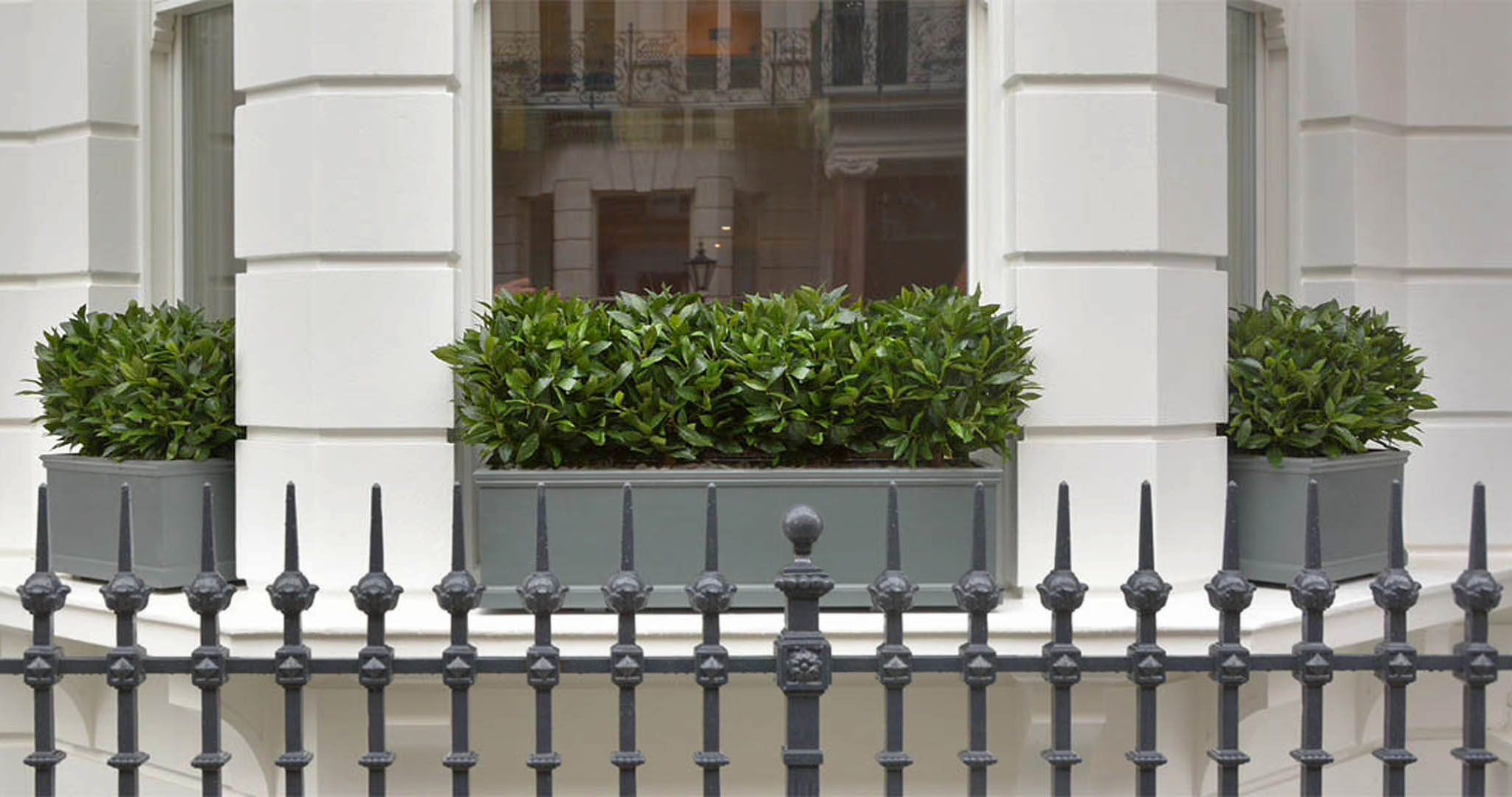 488 fake landscapes soft bay hedges in clients window boxes