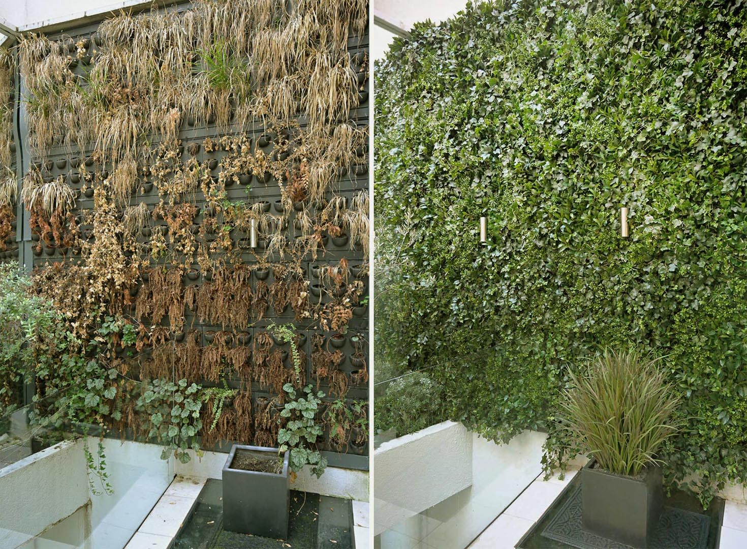 512 fake landscapes classic living wall clareville SW7 before and after 512