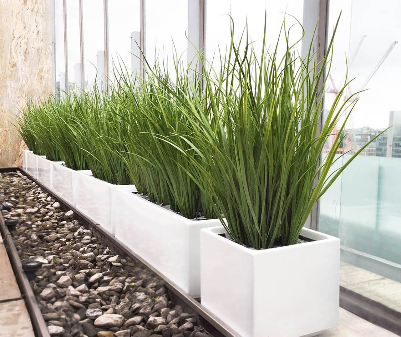 543 fake landscapes 500mm Marram grass in clients planters WC1