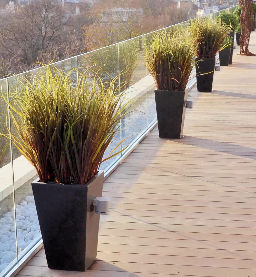 546 Fake landscapes UV russet marram grass in 60cm planters