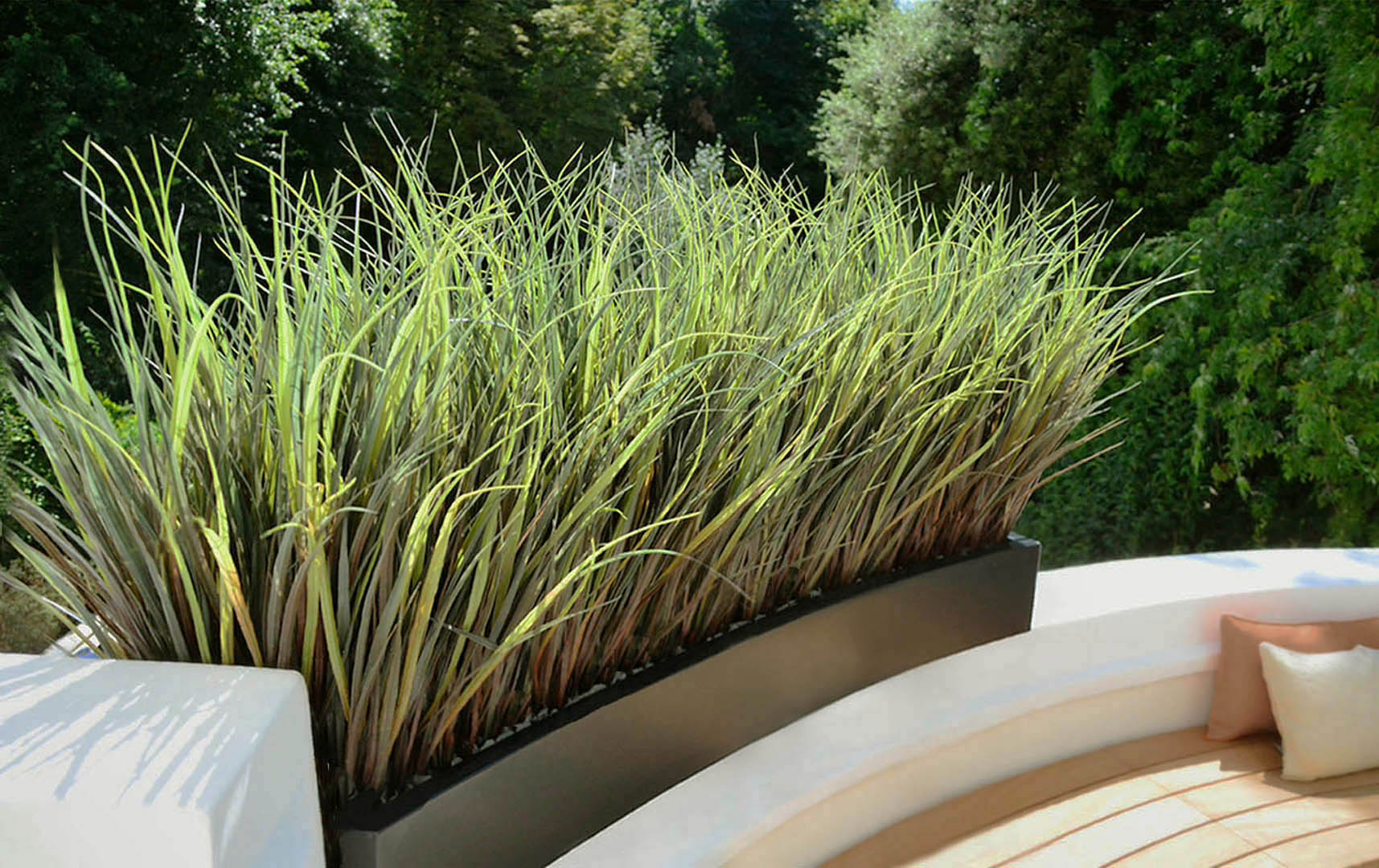 547 fake landscapes marram grass in clients curved planter