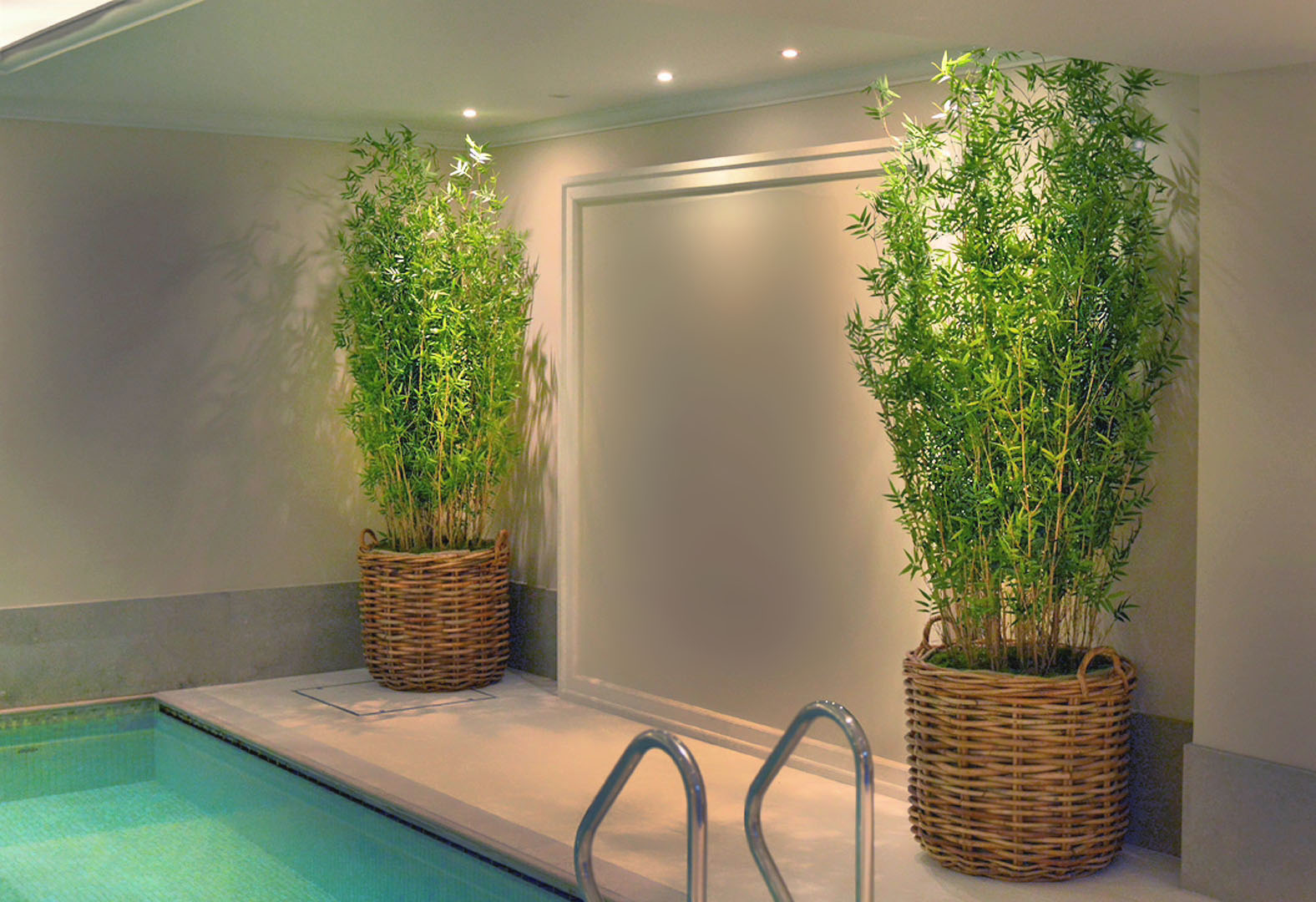 576 fake landscapes 220cm fine leaf pool bamboo in basket