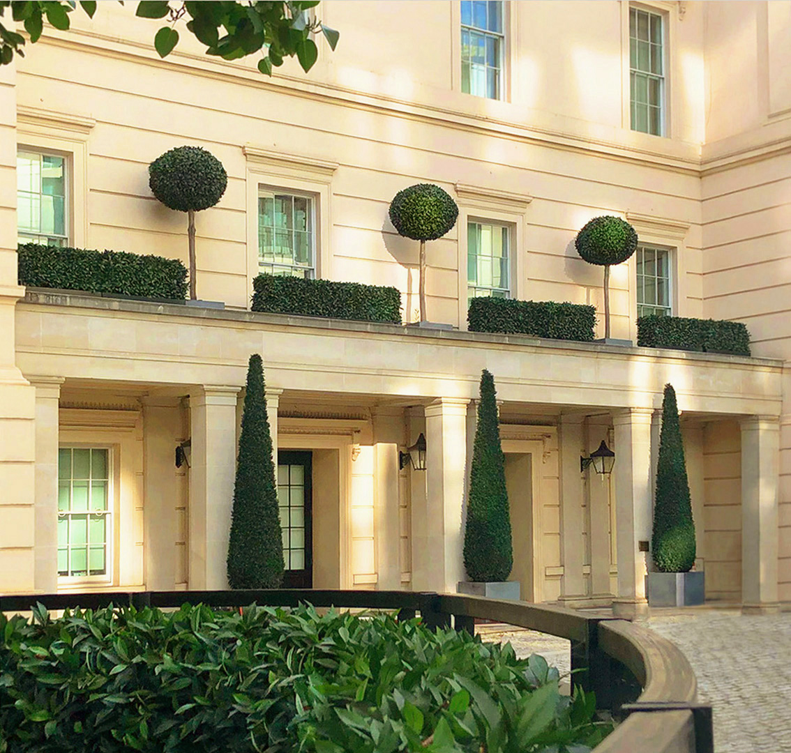 412 fake landscapes formal bay topiary and cypresses The Lanesborough SW1