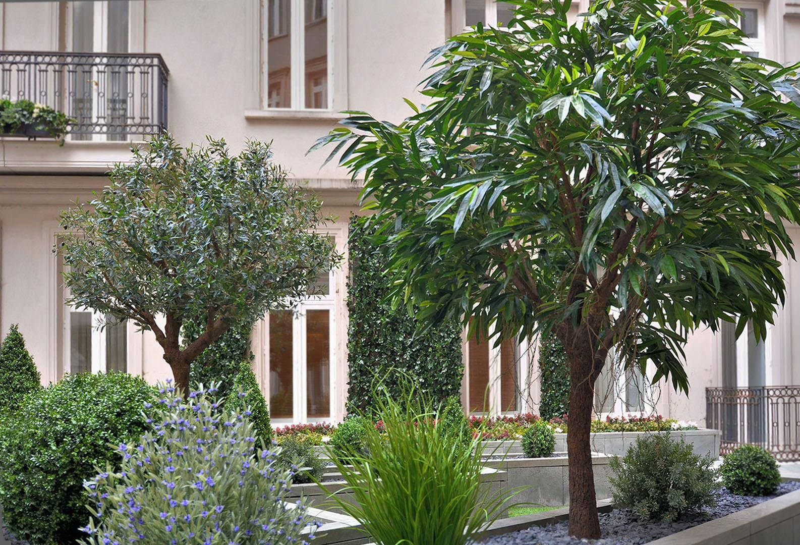 415 Corinthia hotel courtyard 2, olive, mango and base planting