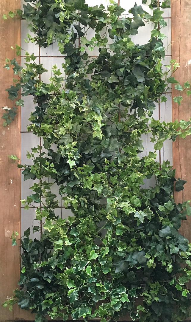 430 fake curtain ivy 11 20