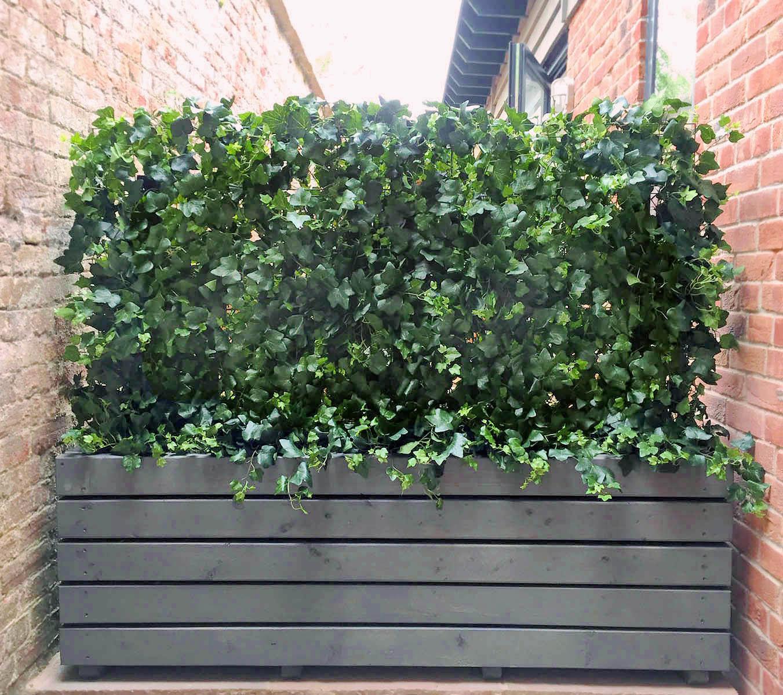 433 fake landscapes dense wild ivy UV hedge 150cm x 90cm in clients planter