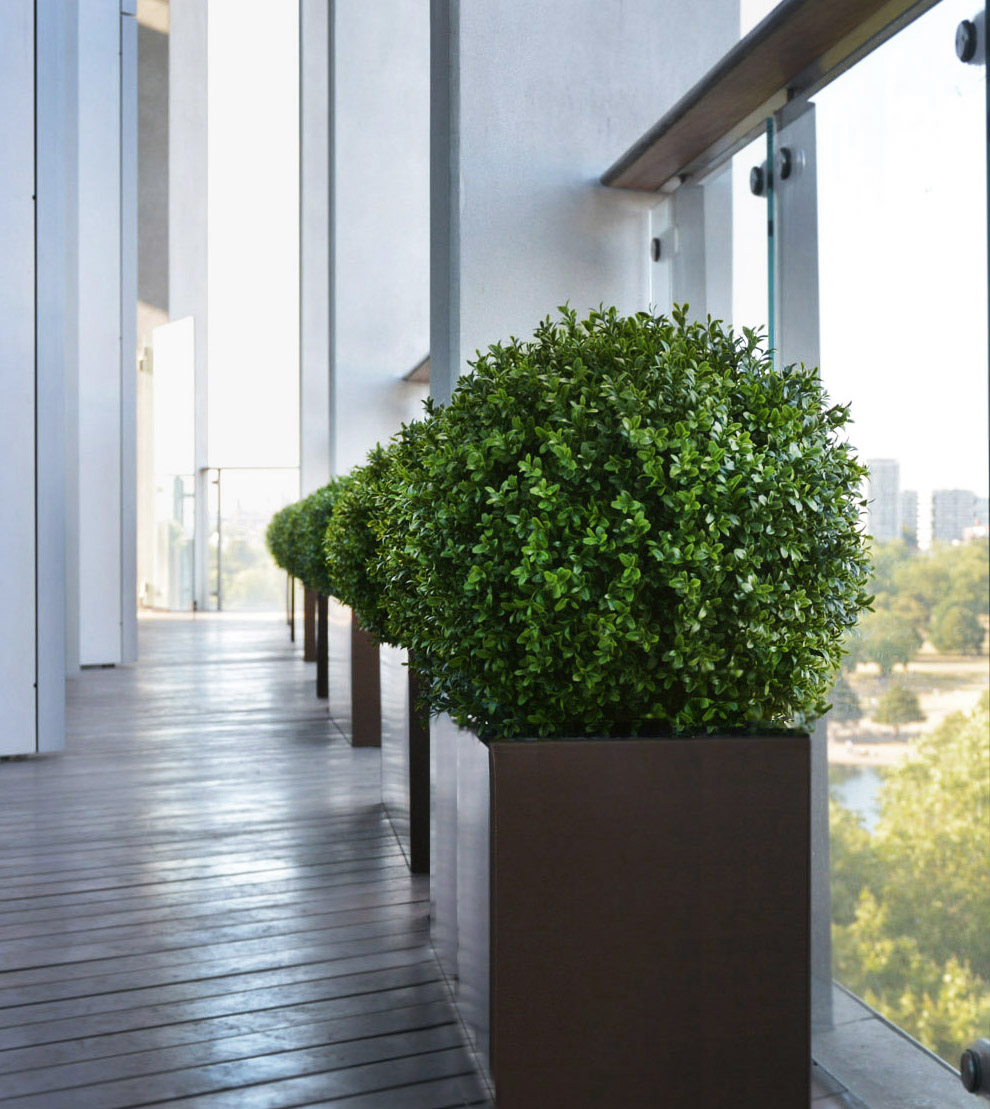 640 fake landscapes 450mm boxwood ball set in custom planters one hyde park