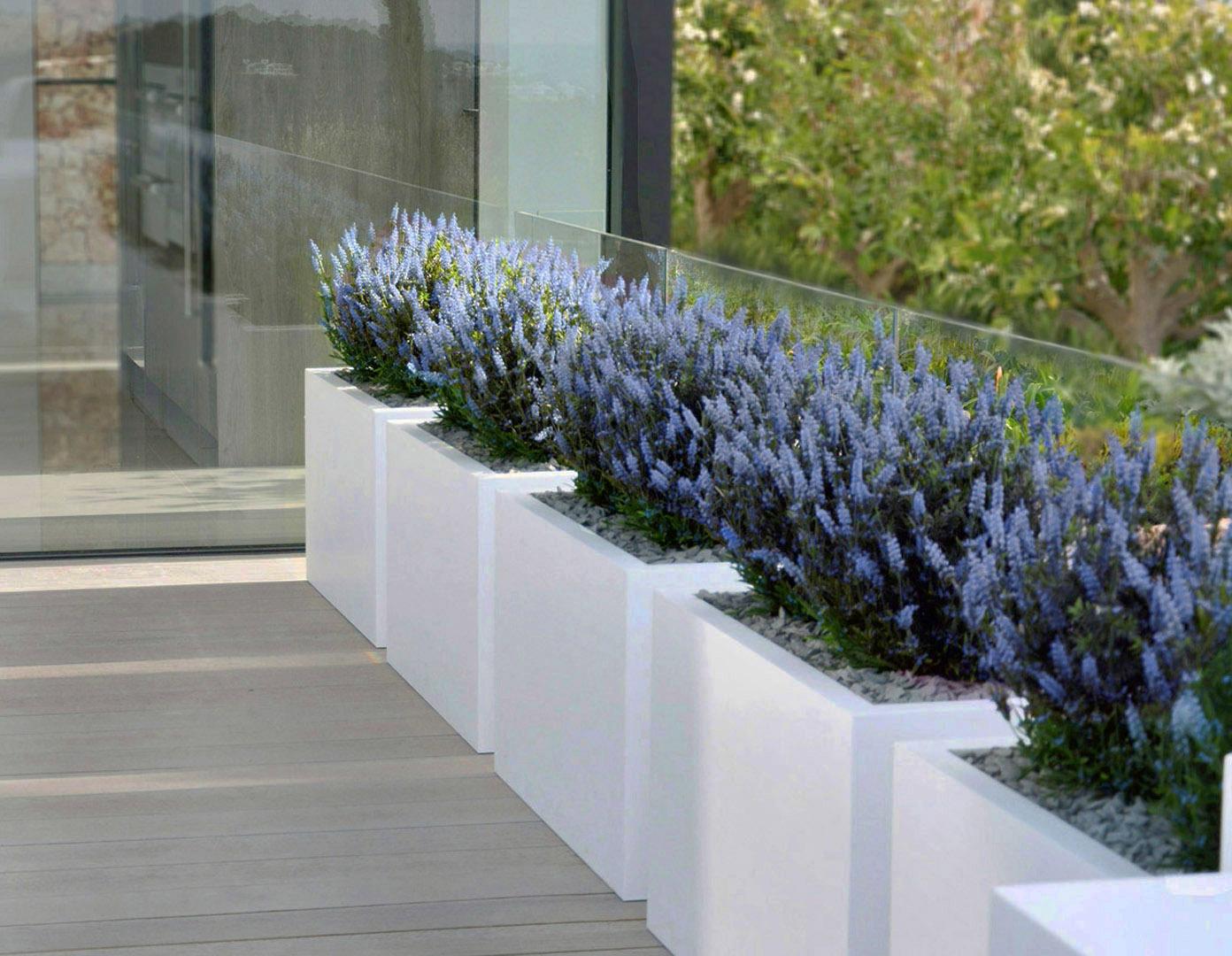 684 fake landscapes blue english lavender Puerto Andratx 1080DEF