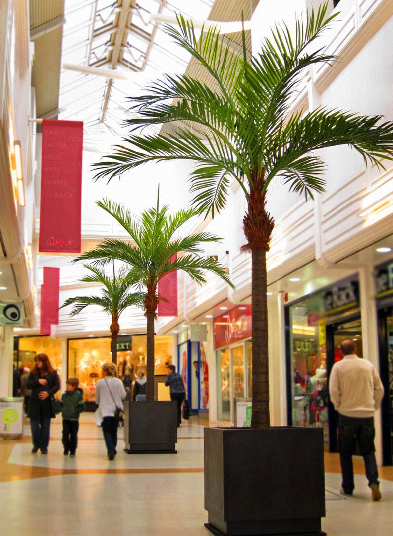 666 market walk fake landscapes palms 1