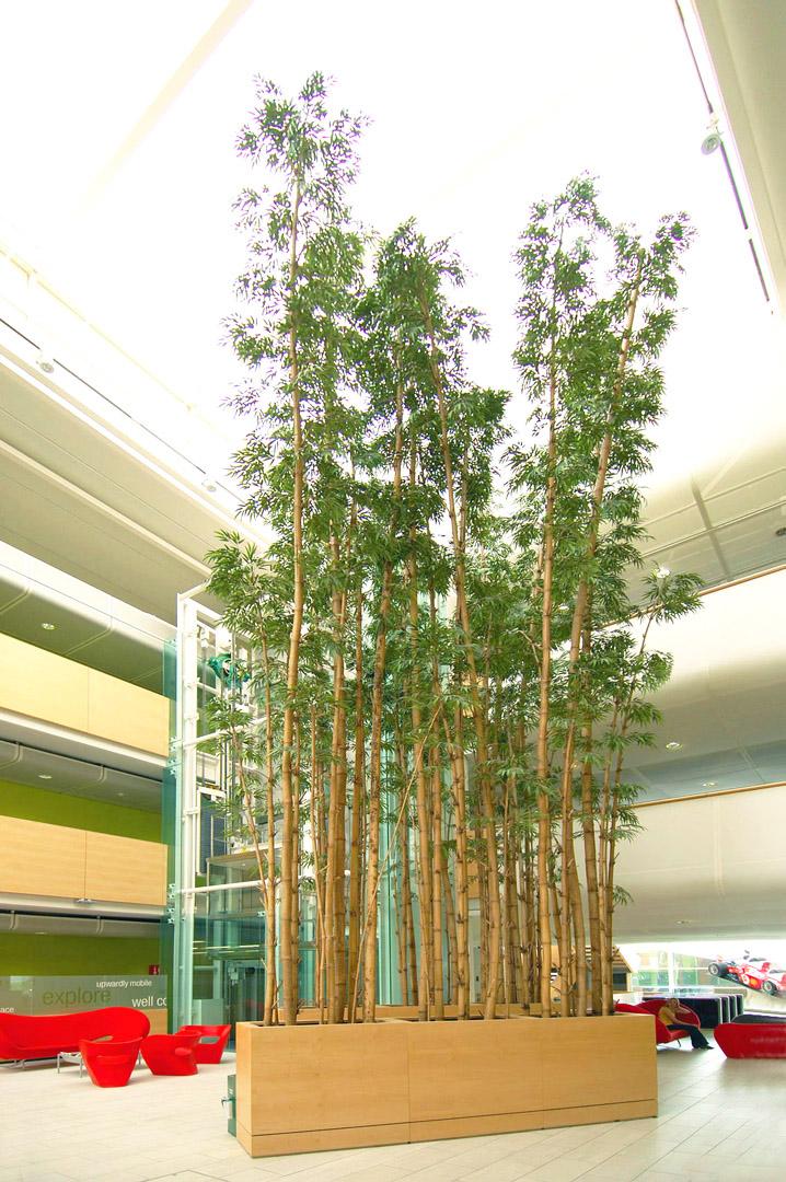 667 fake landscapes bamboos 10m vodafone hq