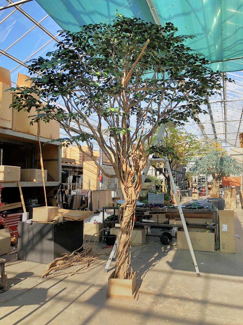 675 fake landscapes liana 4m FR cam for el Pastor production sample
