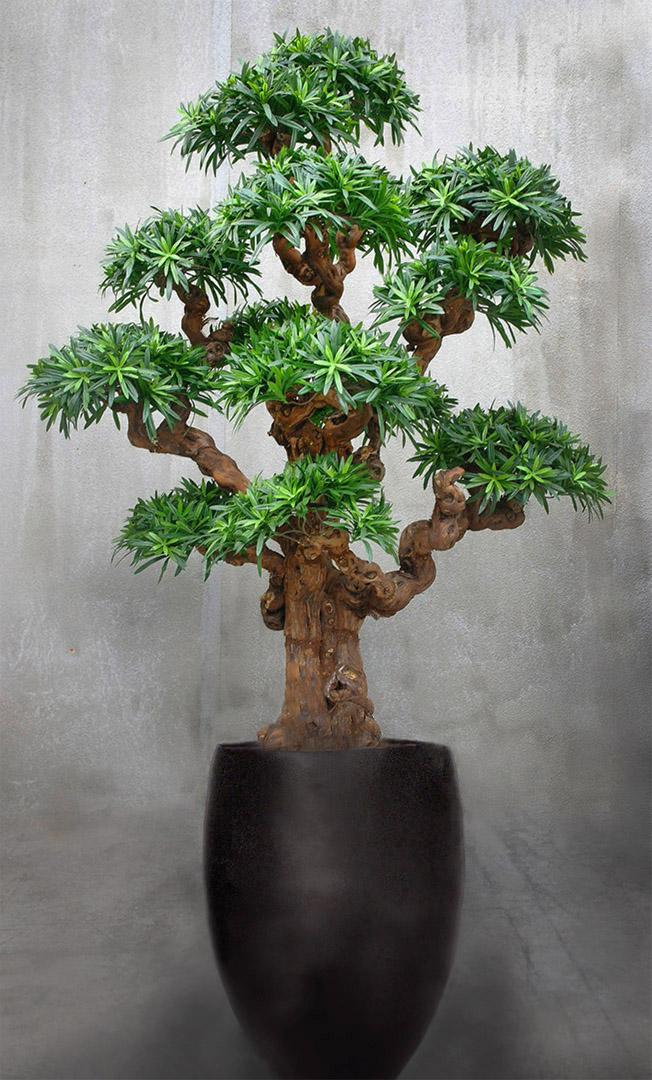785 fake landscapes 150cm giant mutant podo bonsai